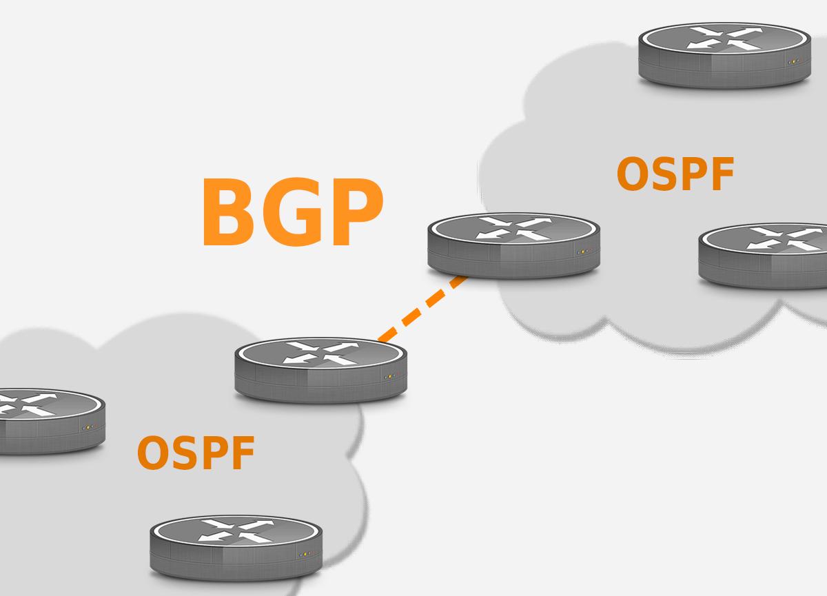 BGP and OSPF