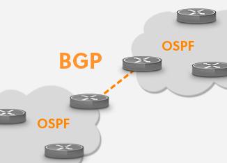 BGP OSPF