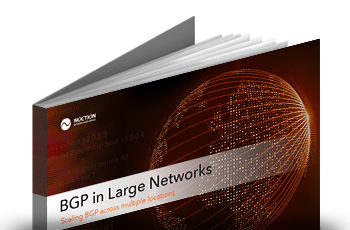 BGP in Large Networks