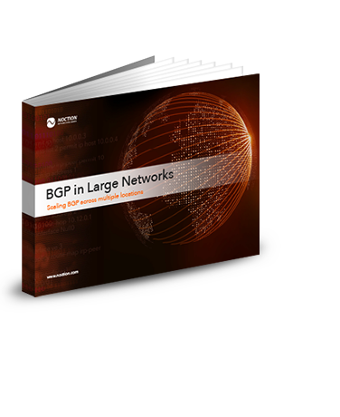 BGP in Large Network eBook