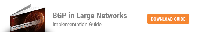 BGP in Large Networks eBook