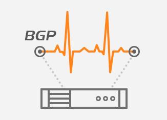BGP Monitoring protocol
