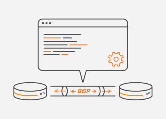 BGP MPLS VPN