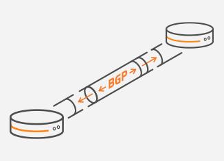 BGP VPN