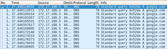 Captured DNS Queries sent to DNS Server