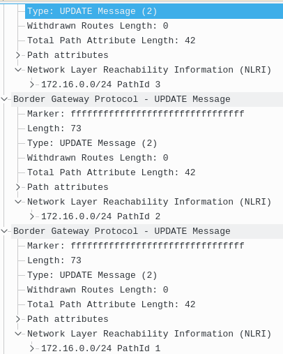 BGP UPDATE Message with three NLRIs 172.16.0.0/24 and their Corresponding Path IDs