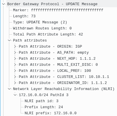 BGP UPDATE Message with Extended NLRI Encoding