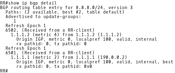 Inspecting BGP Table of RR for Route 8.8.8.0/24