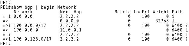 PE-1 BGP Table