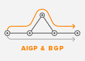 IGP Interior Gateway Protocol and BGP Border Gateway Protocol