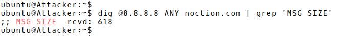 DNS Response Length 618 Bytes