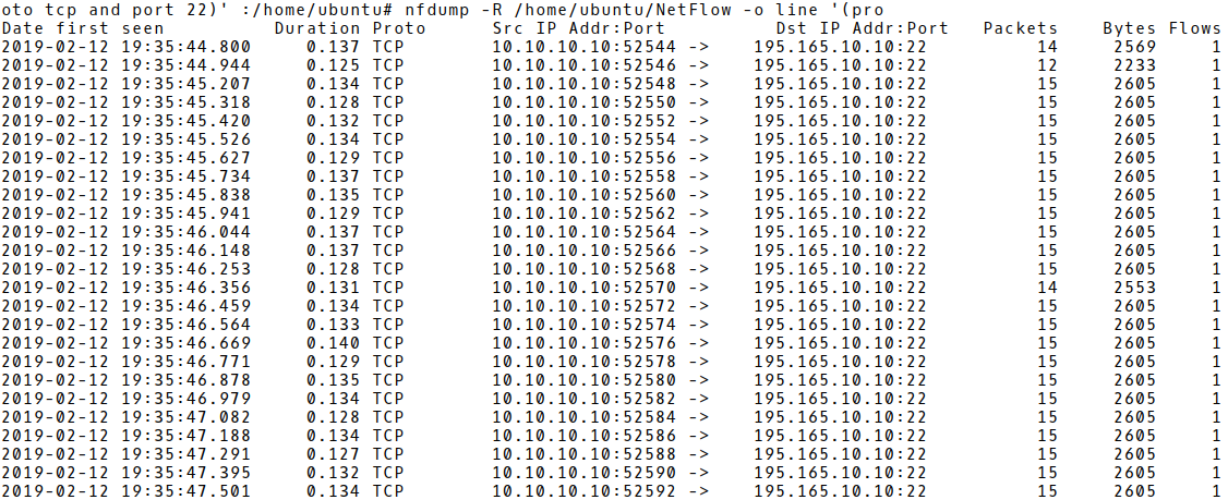 Flow Records of the Brute-Force Phase of an SSH Attack