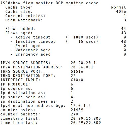 NetFlow v9 Record
