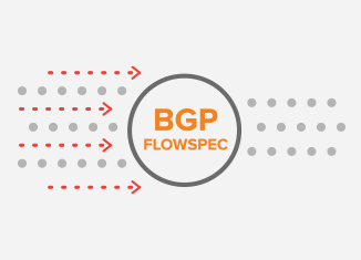 BGP / MPLS Layer 3 VPNs Practical Configuration | Noction