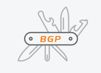 BGP EVPN