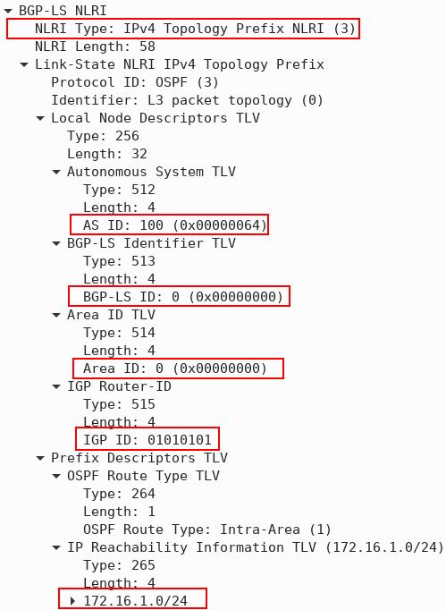 BGP-LS NLRI