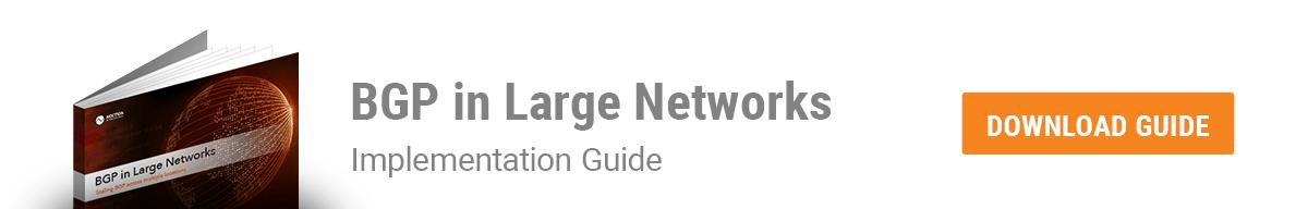 BGP in Large Networks eBook